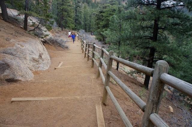 Steep climb on the Silver Cascade Falls Trail