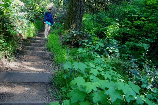 Ascending the stairs on the Dipsea Trail