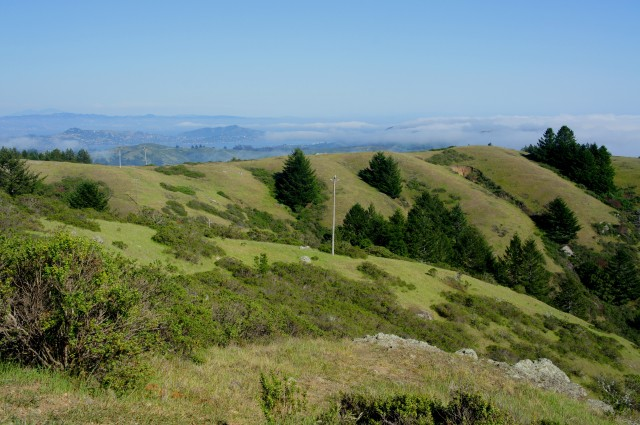Gulch at Lone Tree Creek, with foggy views of Tiburon, Angel Island, and the San Francisco Bay beyond