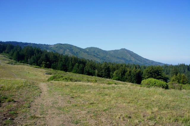 Mount Tamalpais from a little ways down the Coast View Trail