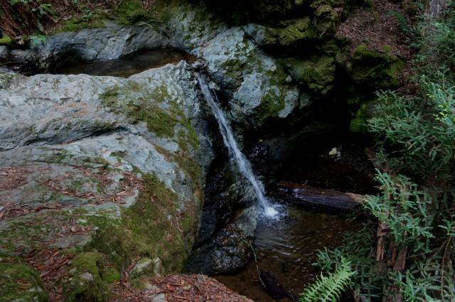 Minor waterfall on Webb Creek in Steep Ravine, Mount Tamalpais State Park