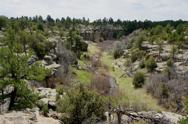 East Canyon Trail, Castlewood Canyon State Park, April 2015