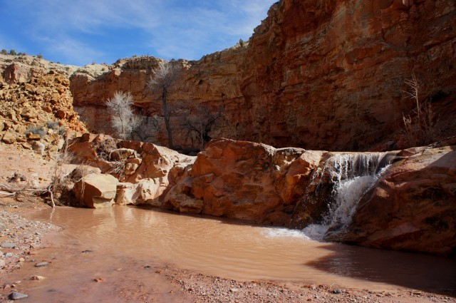 Waterfall in Oak Creek Canyon