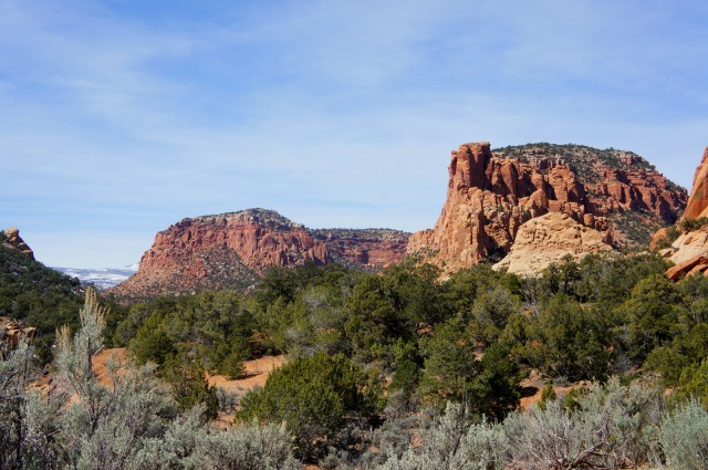 Wingate sandstone cliffs. The right promontory is Oak Creek Point (7,013')