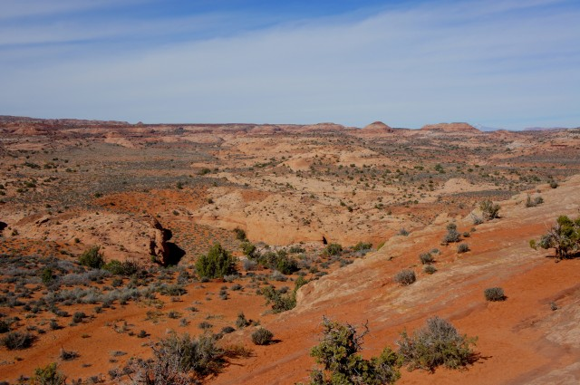 Dry Fork of Coyote Gulch from the Dry Fork Trailhead