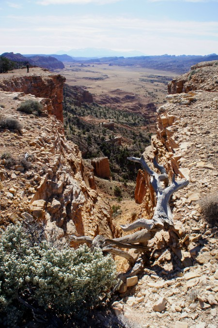 Fissure along the trail to Upper South Desert Overlook
