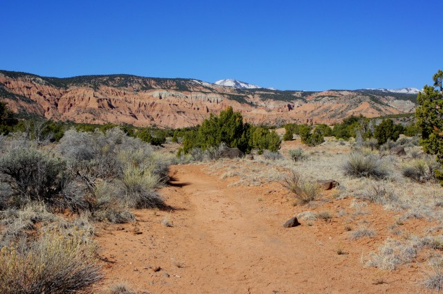 On the trail to Morrell Cabin, Cathedral Valley, Capitol Reef National Park