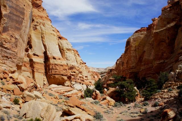Entering Cohab Canyon