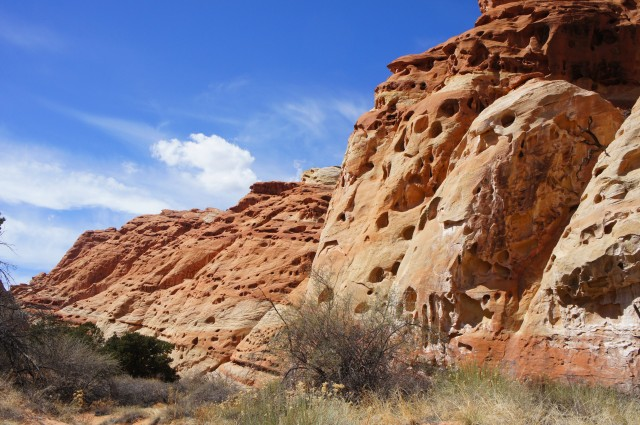 Cohab Canyon Trail, Capitol Reef National Park, March 2015