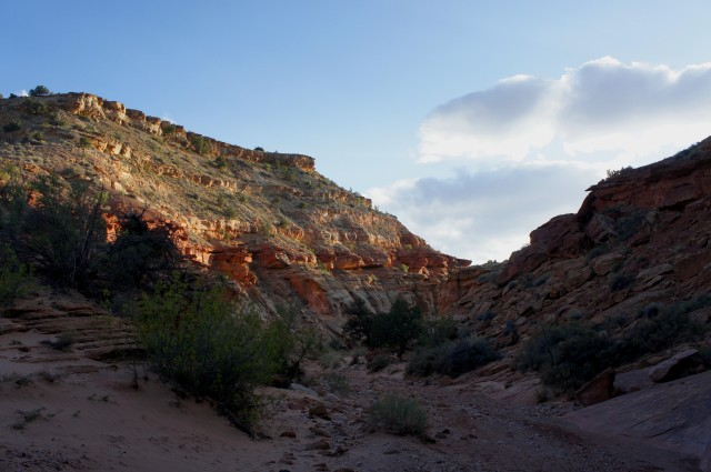 Looking back west at Capitol Gorge