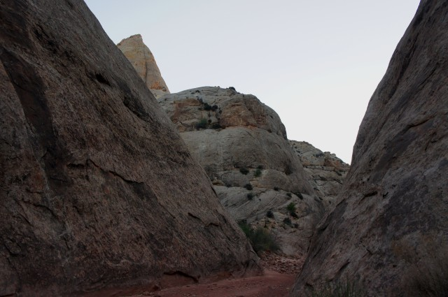 Heading back to the trailhead through Capitol Gorge