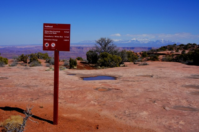 White Rim Overlook Trailhead, Island in the Sky, Canyonlands National Park