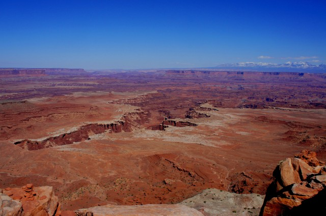 View north from White Rim Overlook: Gooseberry Canyon and the Colorado River beyond