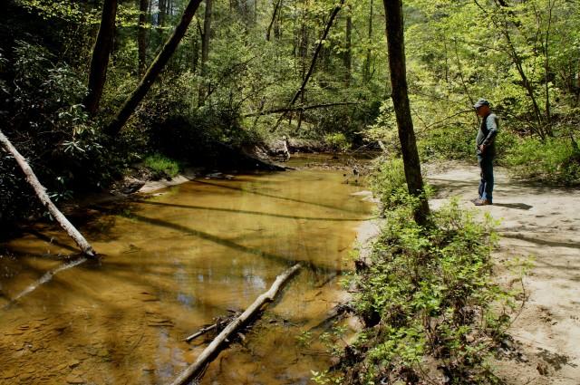Rockbridge Fork, Rock Bridge Trail