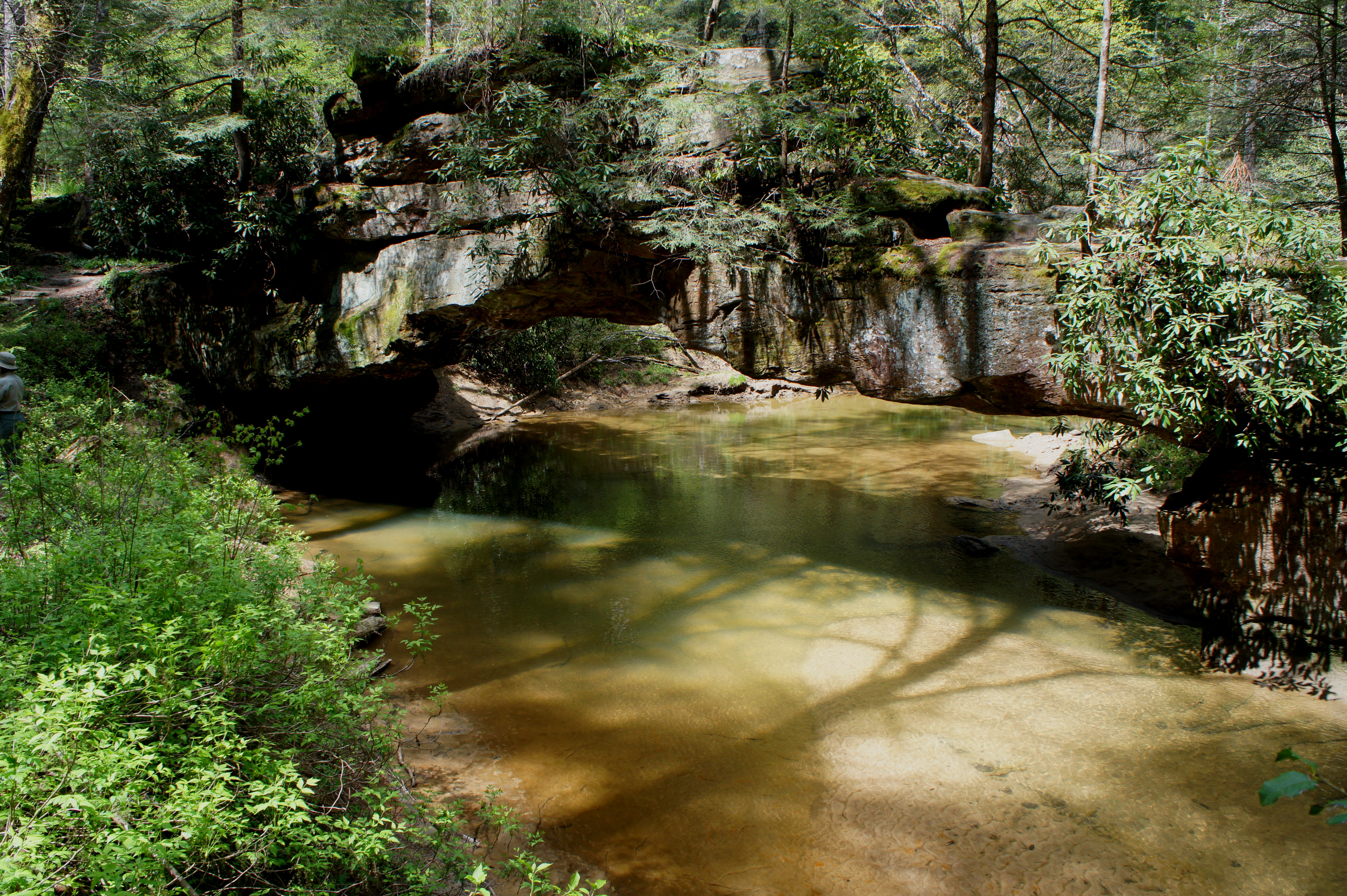 Rock Bridge Trail Red River Gorge Geological Area KY