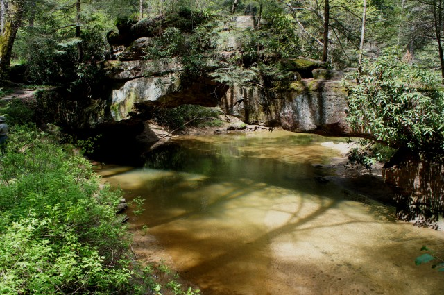 Rock Bridge, Red River Gorge Geological Area, Daniel Boone National Forest, April 2015