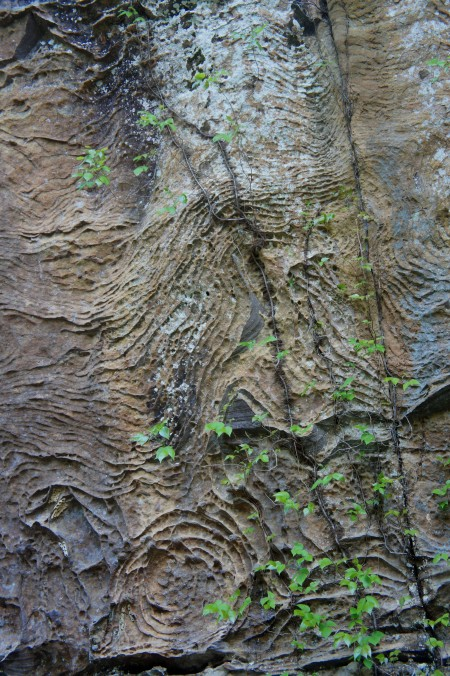 Awesome weathering in the Slade formation