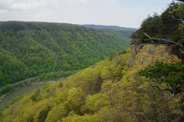 View of New River Gorge Bridge and the Endless Wall to the northwest