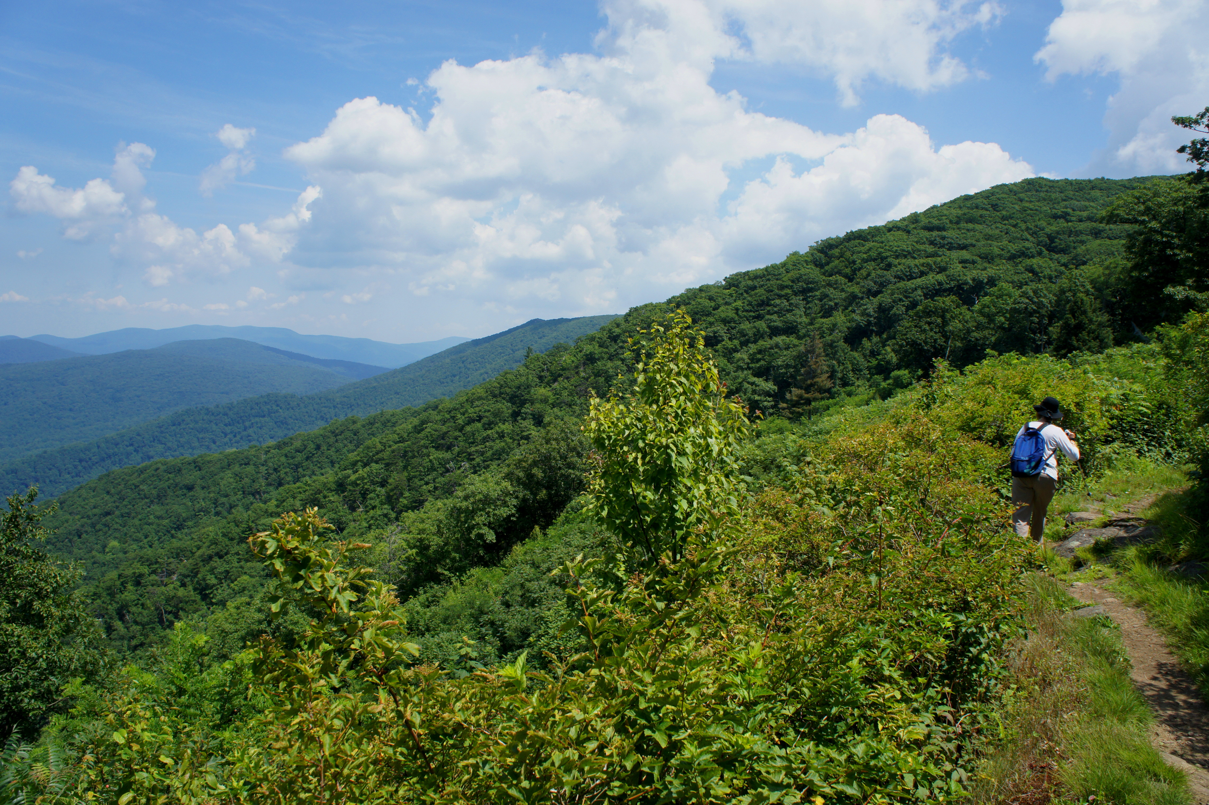 Appalachian Trail To The Pinnacle And Marys Rock