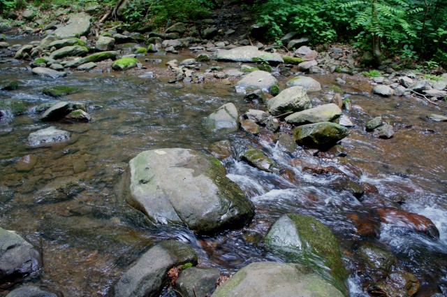 Second crossing of North Fork of the Thornton River, Thornton River Trail, Shenandoah National Park