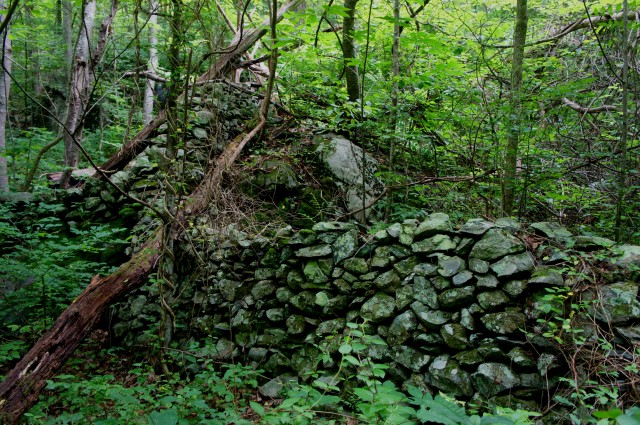 Remains of old stone house along Thornton River Trail