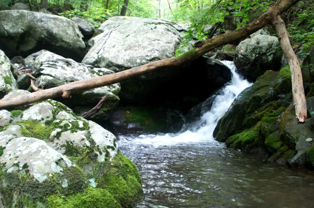 Thornton River Trail, Shenandoah National Park, July 2015