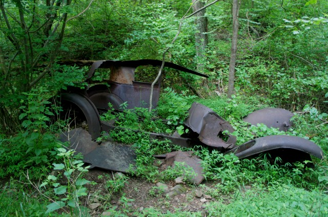 Overgrown car along the Thornton River Trail