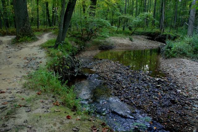 Colvin Run along the Rails to River Trail, Lake Fairfax Park