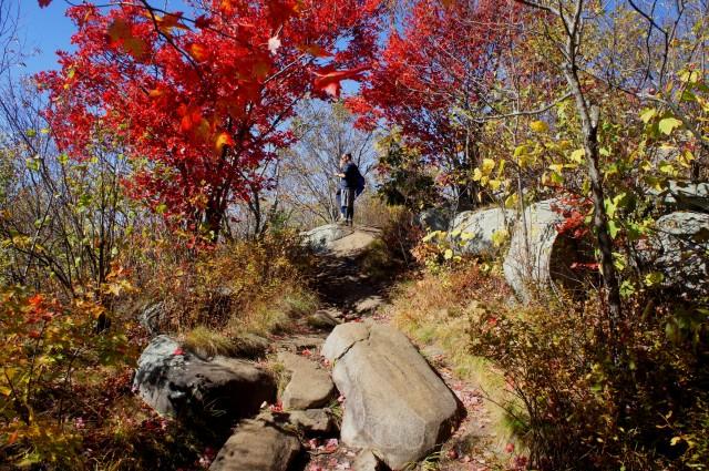 Nearing the Hadley Mountain summit