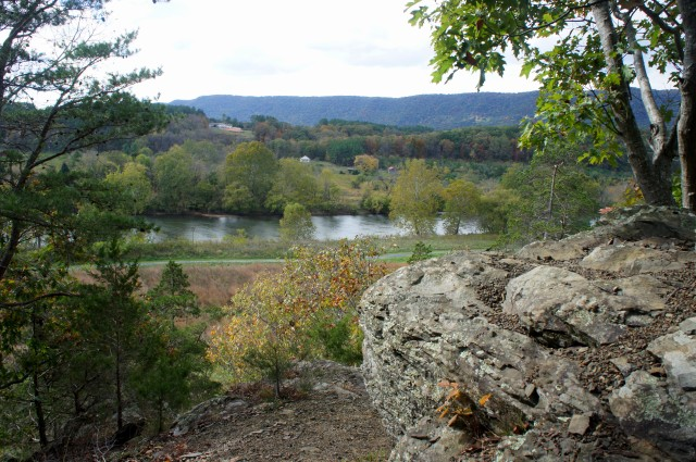 Shenandoah River from Observation Point