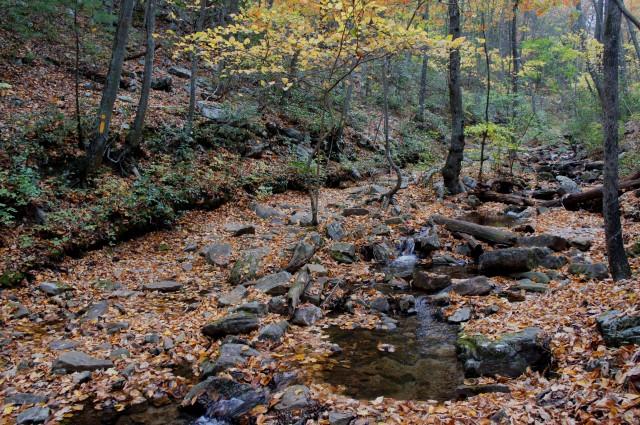Trail crosses Mill Run