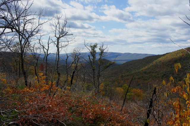 Views of Fort Valley from near the top of the ridge, Veach Gap Trail