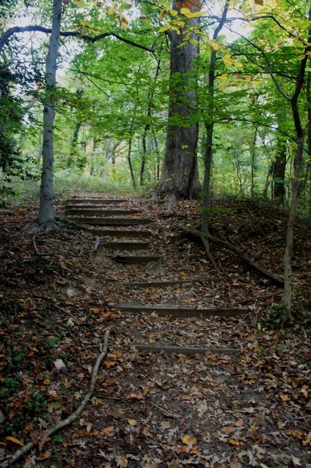 Blue Jay Way, Potomac Overlook Regional Park