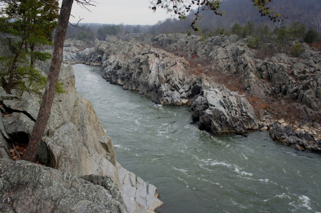 Mather Gorge and the Potomac River from the River Trail, Great Falls Park