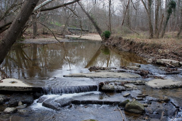 Pimmit Run Trail, McLean, Virginia, January 2016