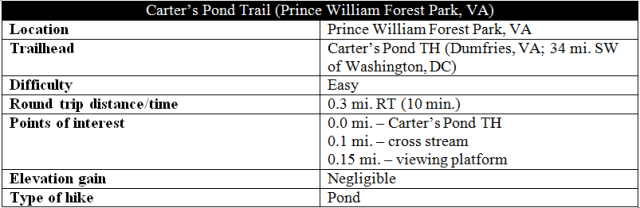 carters-pond-trail-hike-information-prince-william-forest-park