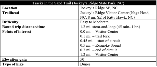 Tracks in the Sand Trail hike information Jockeys Ridge State Park