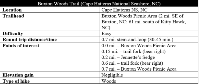 buxton woods trail hike information cape hatteras