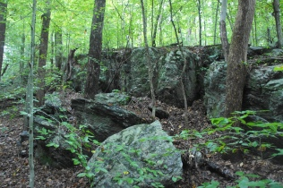 Rock wall along Mine Run Trail