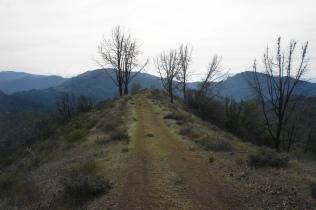 Narrow ridge on the Gray Pine Trail