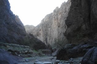 High cliffs in White Rock Canyon