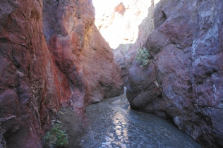 Hot Springs Canyon